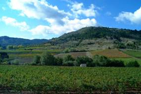Views on the Corbières, the cathar country, and the Pyrenees